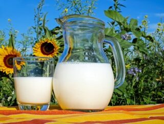 Alergia na laktozę czy białko mleka krowiego – co jest Twoim problemem?